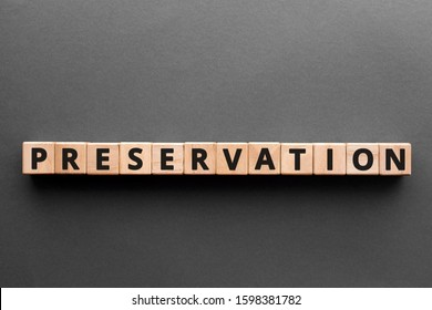 Preservation - word from wooden blocks with letters, process that keeps organic things from decomposing protection preservation concept, gray background