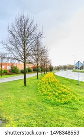 President Kennedylaan, Alphen aan den Rijn, South Holland, Netherlands, March 17 2019: Main road with cycle path separated by roadside overgrown with grass and botanical daffodils