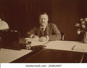 President Theodore Roosevelt (1858-1919), at his desk, 1907.