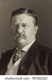 President Theodore Roosevelt, 1904 portrait by Pach Brothers of New York
