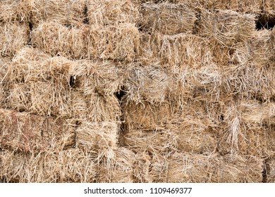 Pressed hay briquettes under the shed. This image may be used as a background.