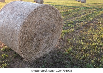 pressed hay twisted into a roll in the corner of the frame, part of the roll cut off the top view