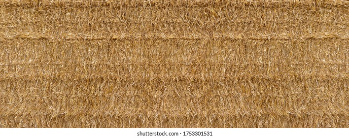 Pressed straw in panoramic closeup, square bales stacked very densely