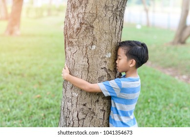 Preteen Asian boy hug a big tree in a nature park in a summer day.