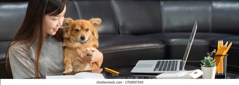 Pretty asian woman working remotely from home using laptop sitting on the couch or sofa in living room for work online with pet puppy cute dog and guardian, work life balance concept