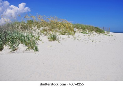 pretty beach dune room for your text