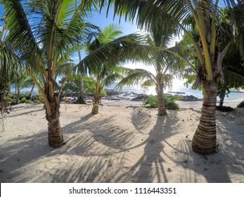 Pretty beach with palm trees at Lefaga, Matautu on Upolu Island, Western Samoa, South Pacific
