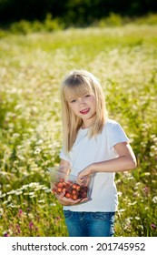 Pretty beautiful girl eats cherry outdoors. attractive young girl with long blond hair holding cherry in chamomille field