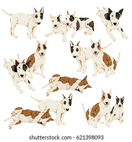 Pretty dog illustration