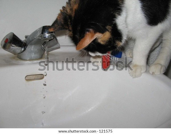 Pretty drops falling from my sink