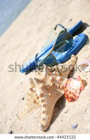 c4206808ee32b Pretty Flip Flop Sandals On Beach Stock Photo (Edit Now) 44421532 ...