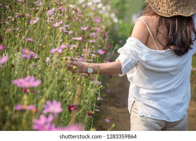 Pretty girl with a hat  walks in a field with field cosmos flowers .