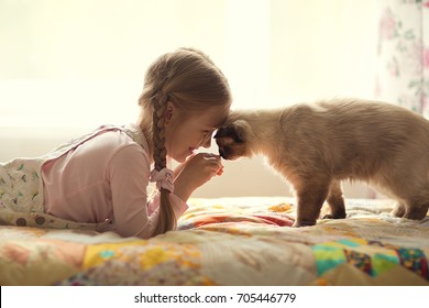 pretty girl plays with a cat