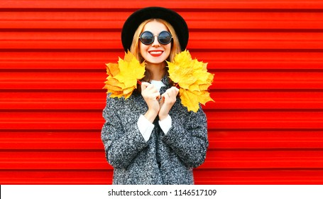 Pretty happy girl holds yellow maple leaves on a red background
