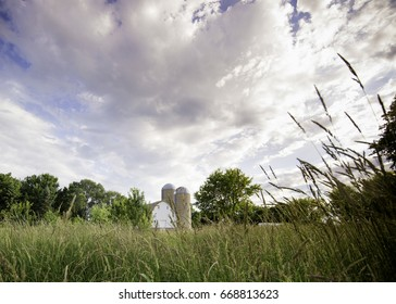 Pretty horizontal big sky farm showing dairy barn and two feed silos. A country barn with clouds and blue skies, trees and grasses.  There is lots of room for copy.