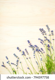 Pretty Lavender Flowers in Row on Side Bottom of Light Toned Wood Board Background with room or space above for copy, text, words or your design.  A Beautiful and Fresh Vertical, Flat Lay Photograph