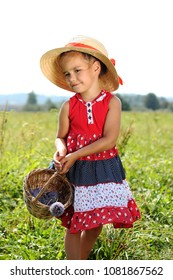 Pretty little girl in straw hat and with straw basket walking on the meadow and gathering flowers and berries, summer mood, vacation, travel concept, outdoor lifestyle portrait