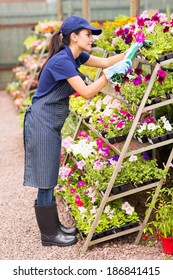 pretty nursery worker trimming flowers