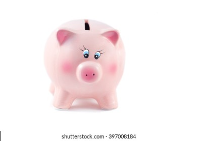 Pretty  Piggy Bank on a White Background, Soft Focus
