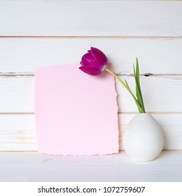 Pretty Pink Blank Card with a Purple Tulip in Gray Vase on a table and against a White Board Wall Background with room or space for copy, text, your words or design. It's a square with side angle view