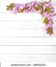 Pretty Pink Cherry Blossom Limbs on Rustic White Board Background with room or space for copy, text.  Vertical that can be horizontal with crop