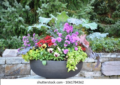 Pretty potted flowers in a kettle style planter