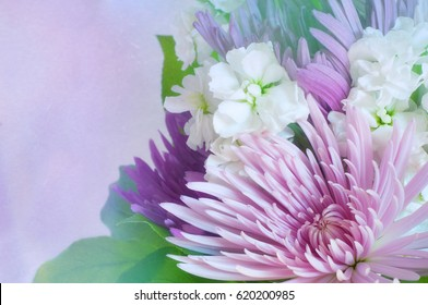 Pretty Purple and Lavender Flowers Bouquet on side of horizontal framework with dreamy watercolor wash background with room or space for copy, text, or your words.  It's beautiful as a vertical.