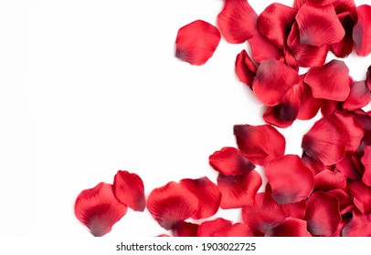 Pretty red petals on a white background
