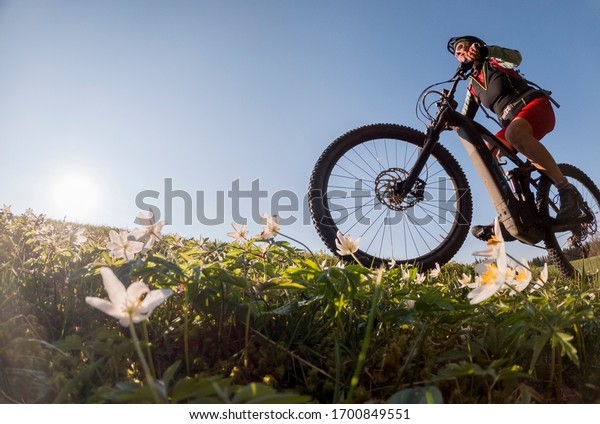 hübsche Senderin, die im FrühFrühling in den Allgauer Bergen nahe Oberstaufen auf ihrem ElektroMountainbike reitet, bei warmem Abendlicht mit blühenden Frühlingsblumen im Vordergrund