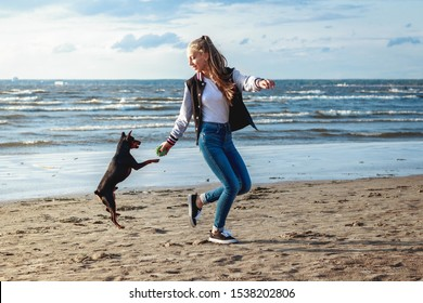 pretty slender European blond teenage girl in blue jeans plays and runs with her friend pet dog black mini pinscher at the sand beach sea coast in sunny summer day