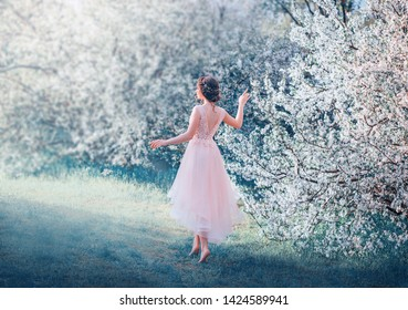 pretty slender girl with braided dark hair walks in flowering garden barefoot, princess goes to sun, lady in delicate elegant pink dress with deep neckline on back, cold colors. Photo without a face.