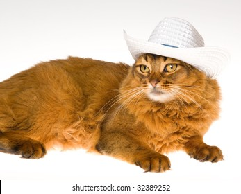 Pretty Somali wearing white cowboy hat, on white background