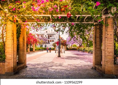 A pretty square in Ayamonte, Andalucia, Spain, with a pergola covered in bougainvillea and jacaranda trees along the side.