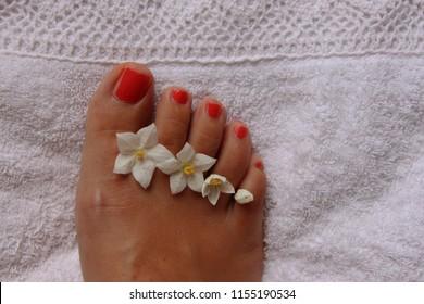 pretty toes red nail polish solanum stock photo edit now