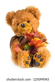 Pretty toy teddy bear with bouquet of autumn leaves isolated on white background
