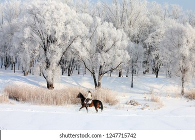 Pretty woman riding her horse through snow at winter morning