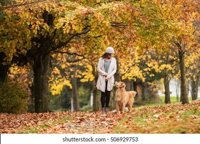 Pretty woman walking her Golden Retriever Dog in a park with Fal