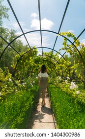 Pretty woman walking through garden archway at local Vineyard. View of grapevines at Marlborough Sauvignon Blanc Winery. Dramatic leading lines and symmetry. Shot in Blenheim, New Zealand.