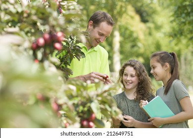 Pretty young girls having outdoor lesson  exploring nature in fruit orchard