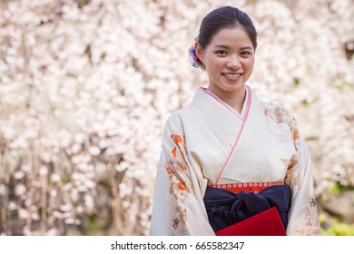 A pretty young Japanese woman dressed in a kimono holds a diploma case and poses in front of cherry blossoms, a symbol of success, on her university graduation day