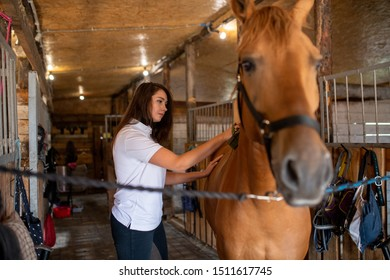 Pretty young sportswoman taking care of her racehorse while brushing top of back before or after training