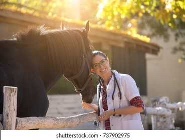 Pretty young veterinarian hugging and cuddling black horse on farm