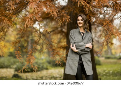 Pretty young woman in the autumn park
