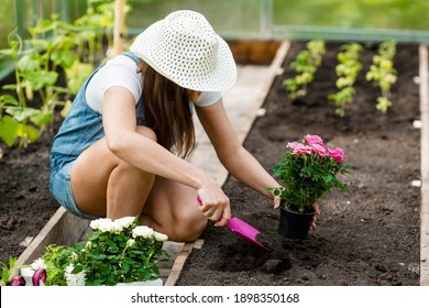 A pretty, young woman in a greenhouse is planting seedlings in the soil. Nearby there are garden supplies. The concept of nature conservation and agriculture.