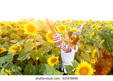 Pretty young woman in national ukrainian blouse embrodery rise hands up on a sunflower plant at sunset, backlight.