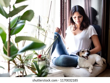 Pretty young woman stroking her dog as they relax together on a window seat at home with green leafy houseplants in the foreground