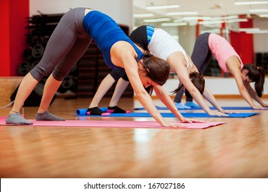 Pretty young women trying the downward facing dog pose in yoga class