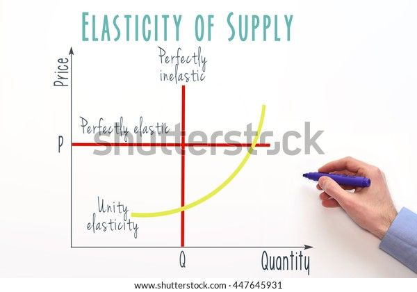 Price Elasticity Supply Graph Marketing Economic Stock Photo Edit