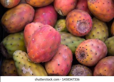 Prickly pear - Barbary fig - tuna