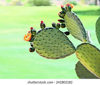 Prickly pear cactus, Oputia ficus indica, in bloom in the spring with bright orange yellow flowers and bright pink flower buds, Phoenix, Arizona. Digital Illustration with copy space.